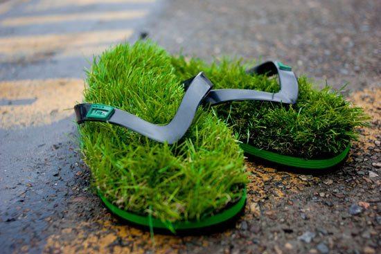 芝生 ビーチサンダル