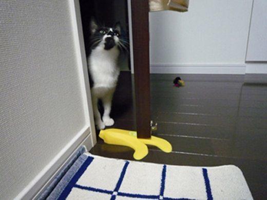 ちょっと!足元気を付けて!! リアルなバナナドアストッパー
