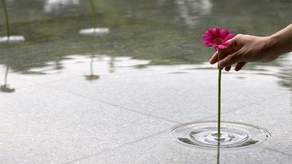 小さな野の花と水を入れる器とRIPPLEのある幸せ